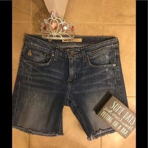 Vintage Big Star Denim Distressed Shorts! Fab!